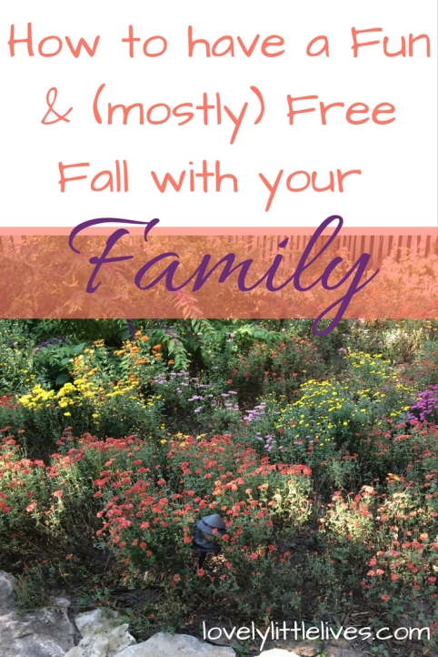 how-to-have-a-fun-and-mostly-free-fall-with-your-family-1